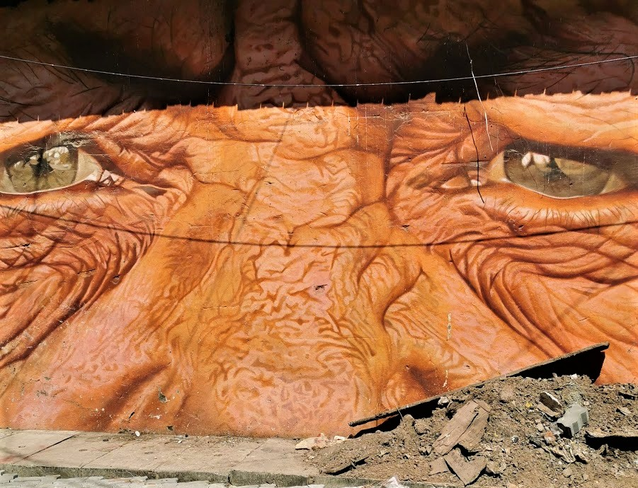 Old face in a mural in Kochi, India